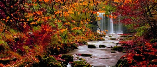 fall-wallpapers-hd-autumn-600x337